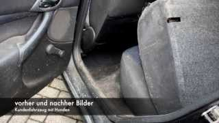 Autositze Reinigen Tornador