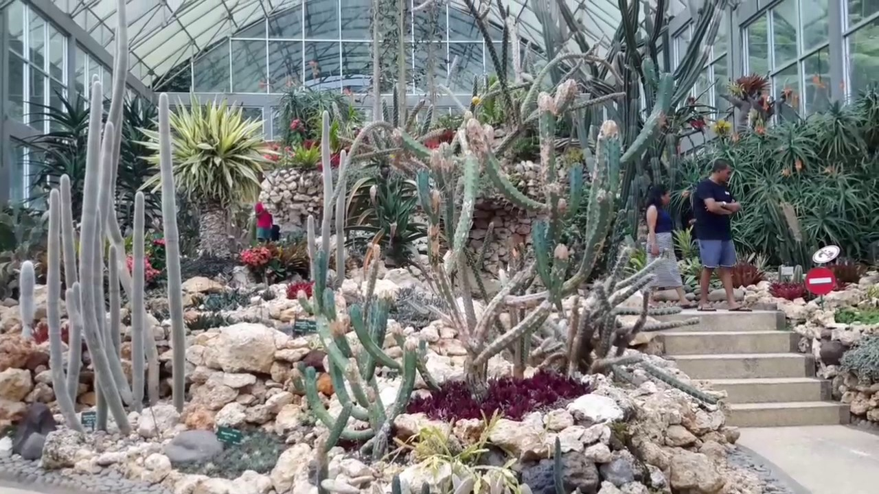 Kebun Raya Eka Karya Taman Kaktus Part 2