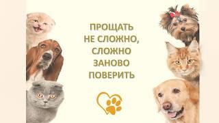 Виртуальная выставка «Друг за друга: правдивые истории о дружбе животных и людей»