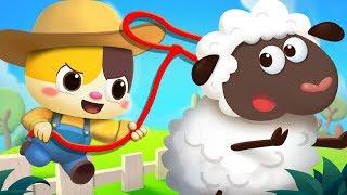 Baby Kitten's Farm Tour   Animal Song   Learn Farm Animals   Kids Songs   Kids Cartoon   BabyBus