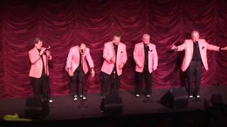 HEY SENORITA - KNIGHTS TO REMEMBER (Oldies Revue)