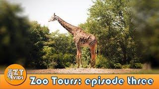 Zoo Tours Ep. 3: Pittsburgh Zoo