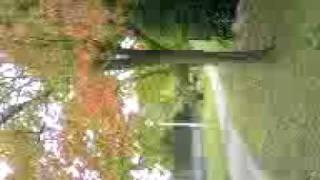 ワンハンドレッドヒルズ〜秋の訪れ
