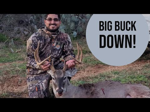 South Texas Public Land Archery Hunt At The Chaparral WMA!  First Public Land Whitetail Deer Down!