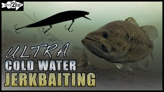 Jerkbait Fishing Tips for Ultra Cold Water Bass