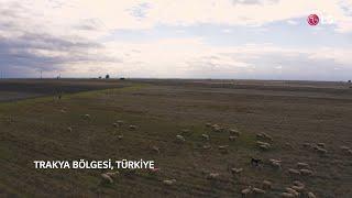 LG ThermaV (Isı Pompası) - Türkiye