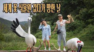 충남 아이들과 가볼만한 곳 / 예산 황새공원, 세계 꽃…