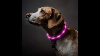 LED Dog Collar | How Can Be Cut & Still Work?| Bseen