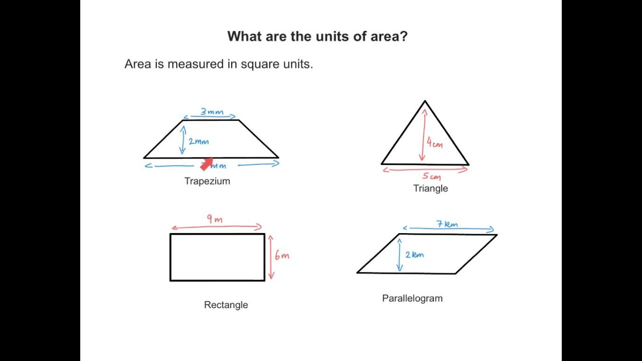 What Is Area? Ks2 Maths