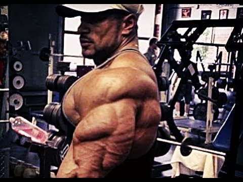 Roelly Winklaar Triceps  Compilation - World Bodybuilder Workout