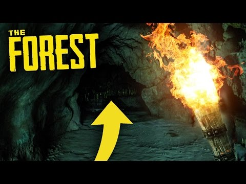 DEEP IN THE CAVES! The Forest!