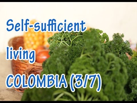 Self sufficient living farmers of Subachoque, Bogotá, Colombia: pt 3/7 - organic products