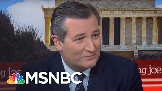 Senator Ted Cruz : We Should Take Up Grassley, Cruz Bill | Morning Joe | MSNBC