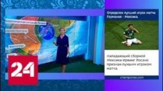 """""""Погода 24"""": прогноз для болельщиков - Россия 24"""