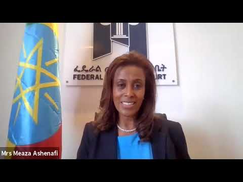 Reform and the Rule of Law in Ethiopia