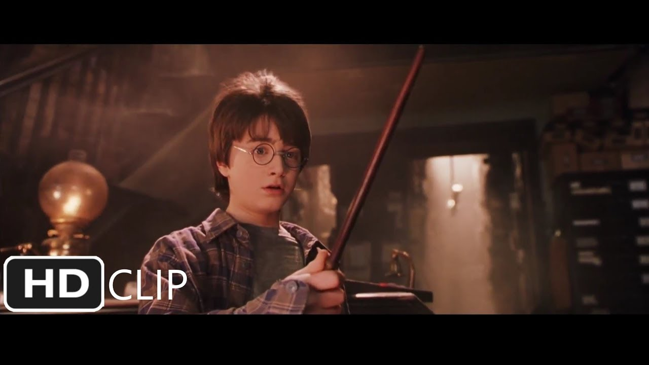 Download Harry Gets His Wand | Harry Potter and the Sorcerer's Stone