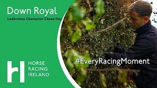 Ladbrokes Festival of Racing Preparations   Down Royal