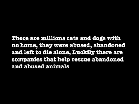 Animal abuse persuasive essay