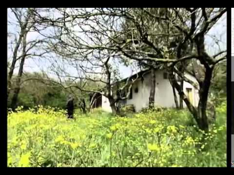 Volkan Konak-Mimoza Çiçeğim (Mimoza Albümü-2009)