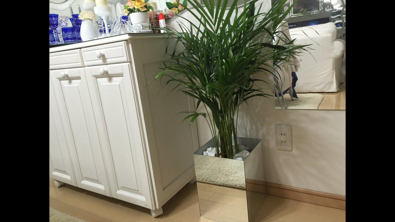 Faça voc u00ea mesmo um vaso de espelhos para sua planta YouTube -> Vasos De Decoração Para Sala Pequena