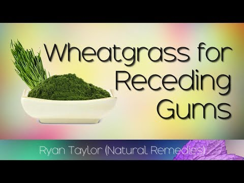 Natural Treatment: for Receding Gums (Wheatgrass)
