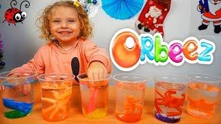 Crestem Orbeez si Animale de Mare   Video Educativ pentru Copii