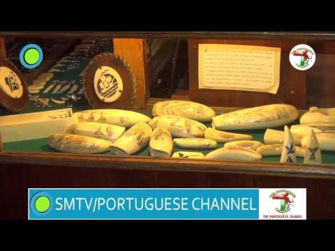 PORTUGUESE CHANNEL 63