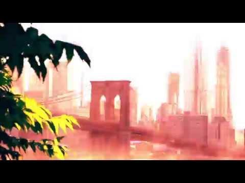New York City Bridges Timelapse 2015