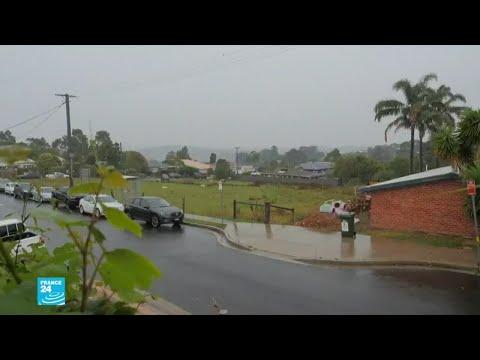 وأخيرا ..الأمطار بدأت في الهطول على حرائق الغابات في أستراليا  - نشر قبل 2 ساعة