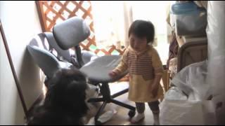 他にも英語キッズの動画がたくさん⇒ http://www.benesse.co.jp/wk/conte...