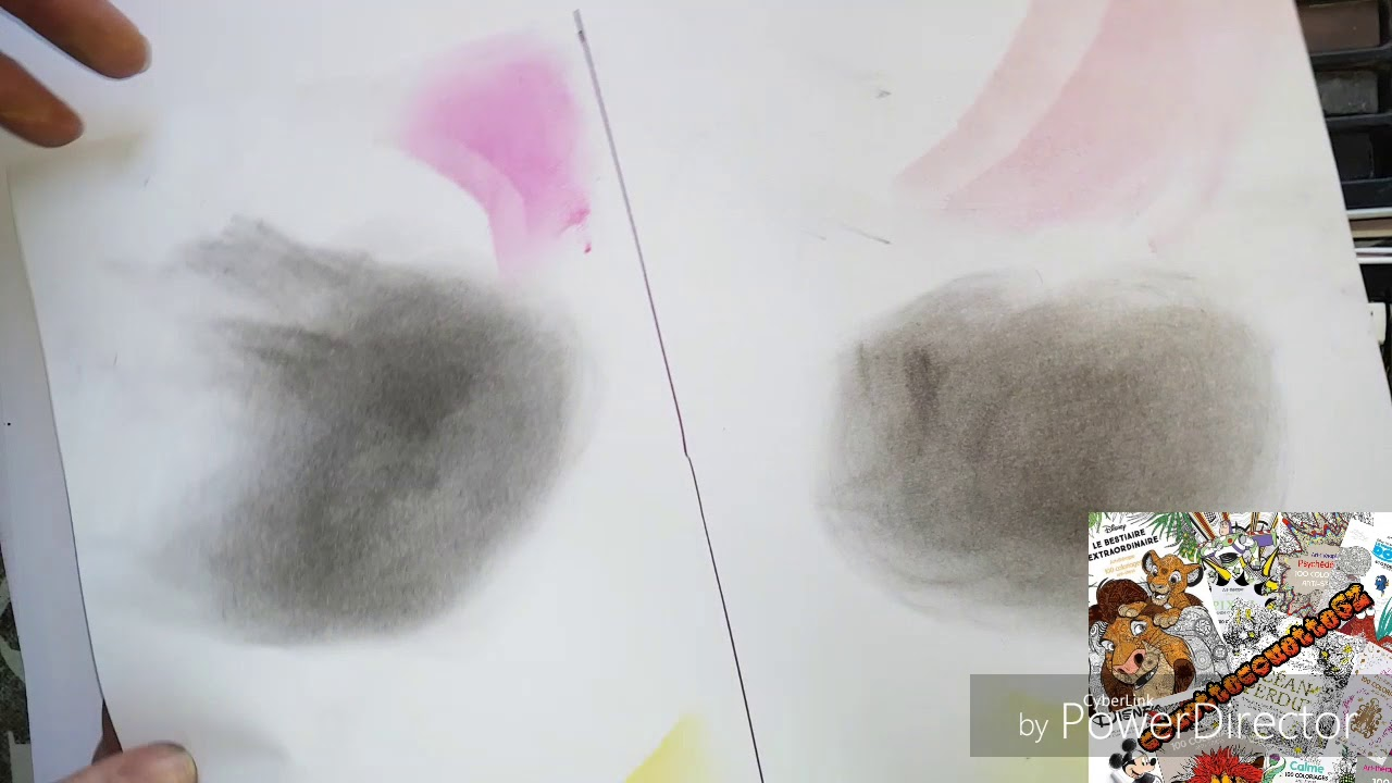 Pastel Sec Action Vs Faber Castell Mon Avis Youtube