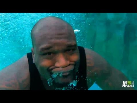 Aftershow: Shaq's Tank | Tanked