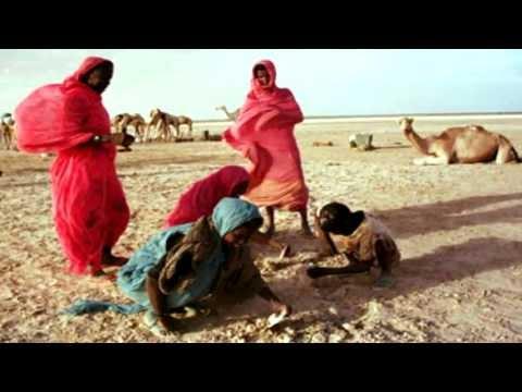 Free Mauritania from slavery.