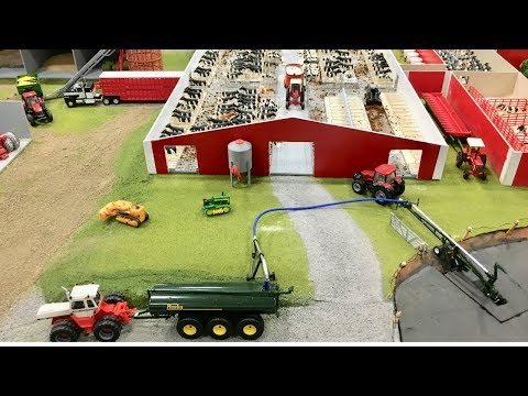 Tyler Stoops' Pennsylvania Dairy Farm Display