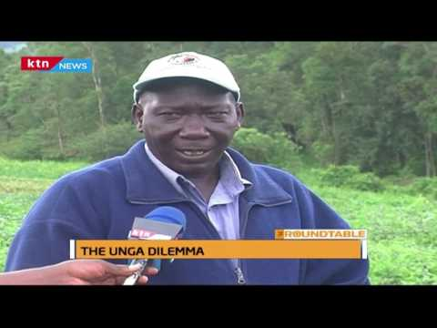 The RoundTable: The Unga dilemma part 1