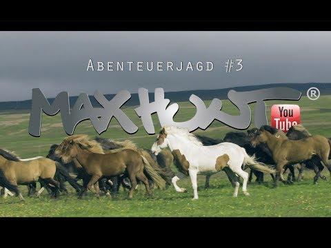 Das Pferd das Island bevölkerte, der Isländer - Auf Achse #3
