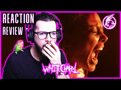 "Whitechapel ""When a Demon Defiles a Witch"" - REACTION / REVIEW"