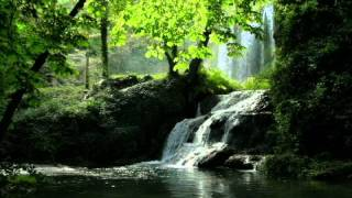 Música que Chico Xavier Gostava - LILI (HI LILI, HI LO)