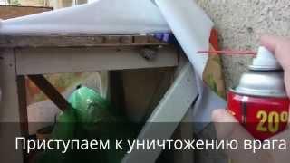 видео Как избавиться от осиного гнезда на даче