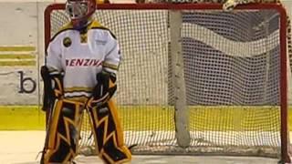 Hokejky  LITVÍNOV 2005