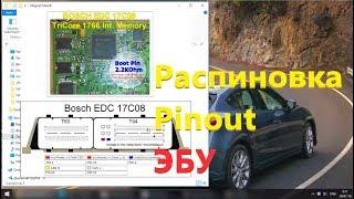Распиновка / Pinout ЭБУ 💡 Bosch Delphi Marelli Siemens Motorolla Continental Sagem Denso Visteon