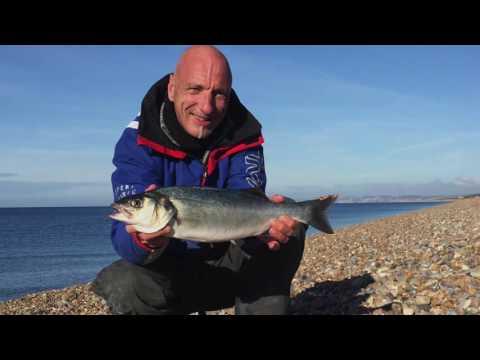 Chesil Beach Fishing October 2016 Autumn Harvest