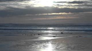 "♥ ""Wave"" (instrumental)"