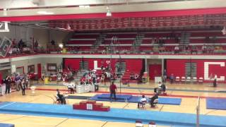 NIles West Gymnastics  Individual State Finals 2014