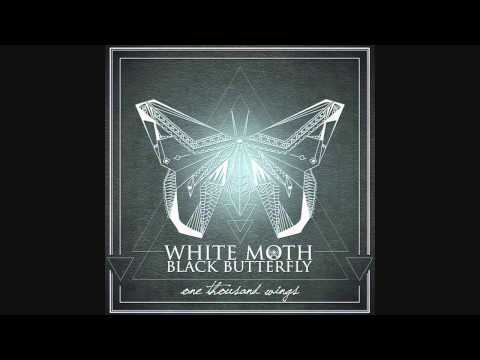 Paradise - WHITE MOTH BLACK BUTTERFLY