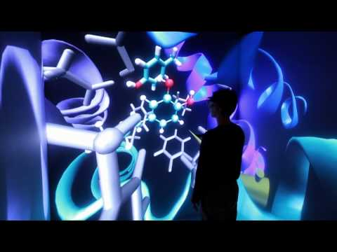 Weill Cornell Medical College 3D CAVE™