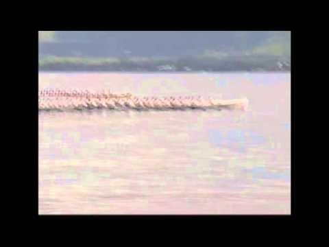 AMERICAN SAMOA FAUTASI RACE 2014
