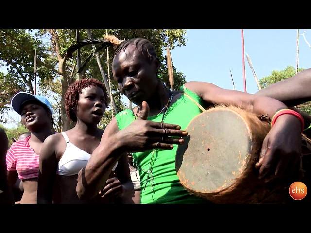 Discover Ethiopia Season 2 EP 3: Majaneg Forrest