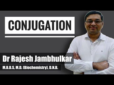 Conjugation, Metabolism of Xenobiotics- Phase 2, Biotransformation, Detoxification