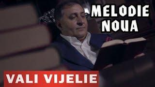 VALI VIJELIE - Daia mai oftez si plang (VIDEO NOU 2019)